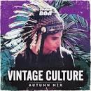 32 Músicas de Vintage Culture