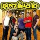 30 Músicas de Bochincho