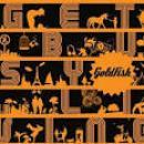 17 Músicas de Goldfish