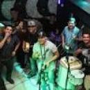 6 Músicas de Grupo Freelance