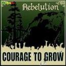 44 Músicas de Rebelution