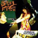 108 Músicas de Reel Big Fish