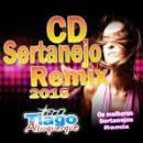 1 Músicas de Remix
