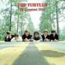 22 Músicas de The Turtles